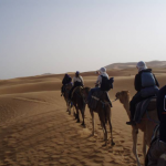 Travel round-up: tours to Morocco