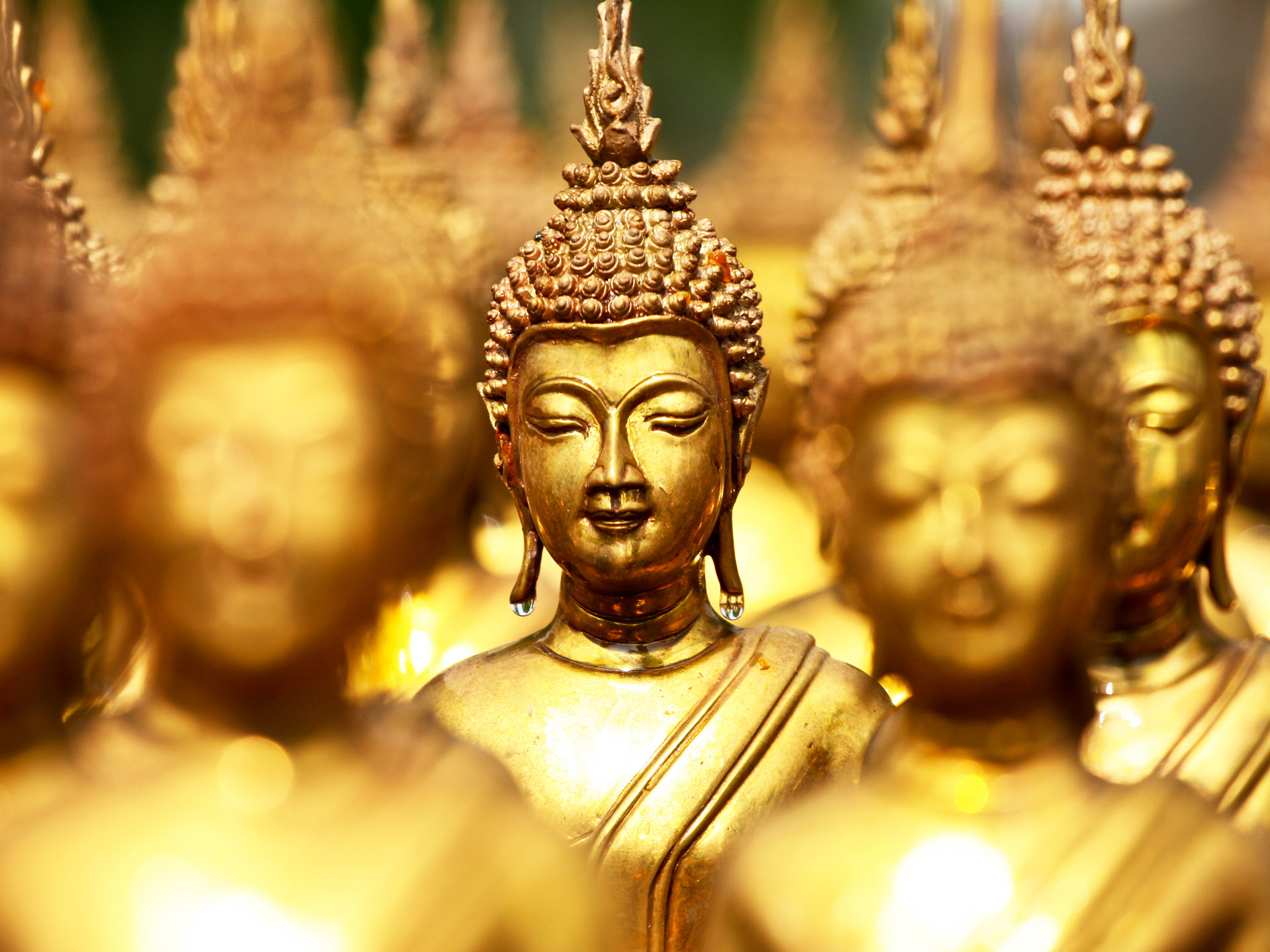 Buddhism forms the basis of religious festivities in Sri Lanka