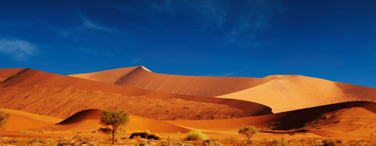 Top 5 deserts of the world