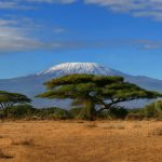 The New Seven Wonders of Africa