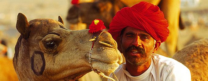 The Famous Pushkar Camel Fair