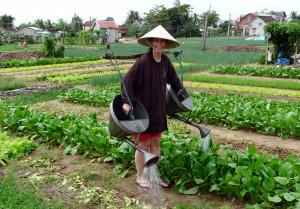 Tra Que watering crops