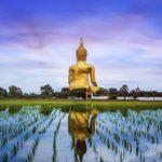Thailand on Film