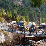 Adventuring: Nepal
