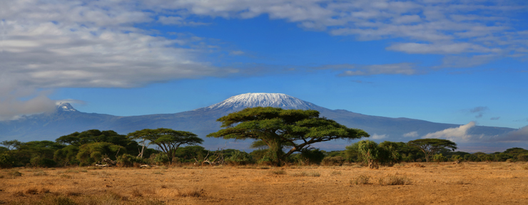 All about Tanzania