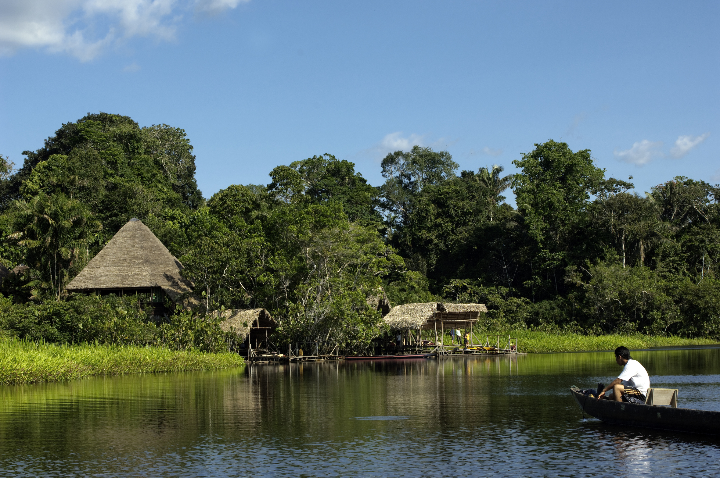 Top 10 Facts About The Amazon Rainforest The Inside Track