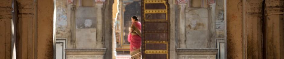 Exploring India on the Taj Traveller