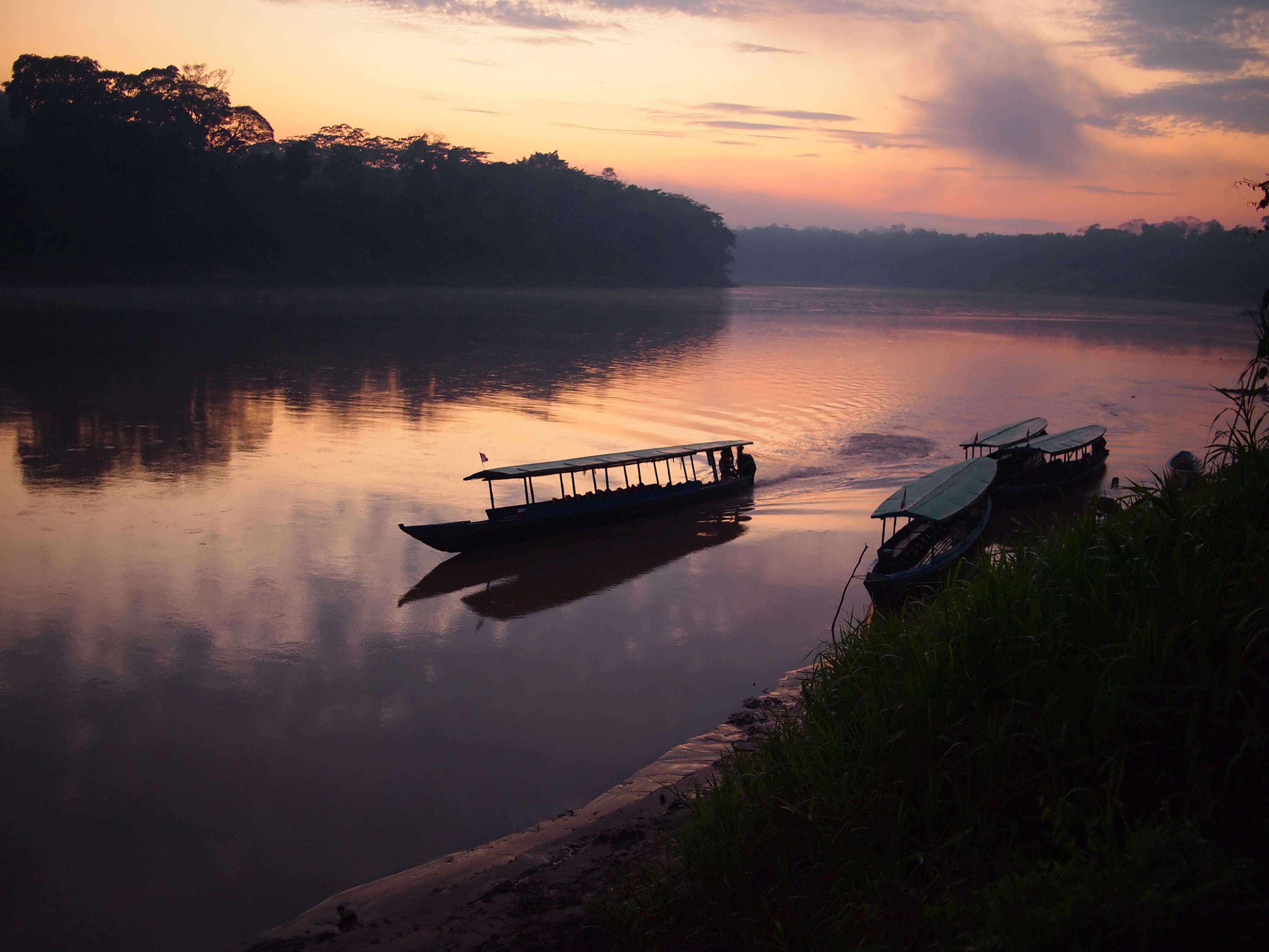 http://www.dreamstime.com/royalty-free-stock-images-amazon-rainforest-sunrise-image22319009