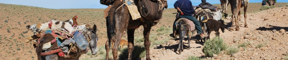 The migration of the Berbers in Morocco
