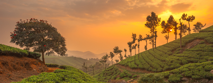 Our top picks for travelling beyond India's Golden Triangle
