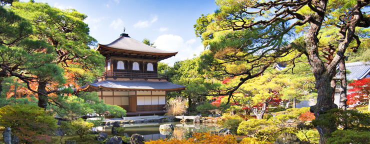 A Dream In Japan