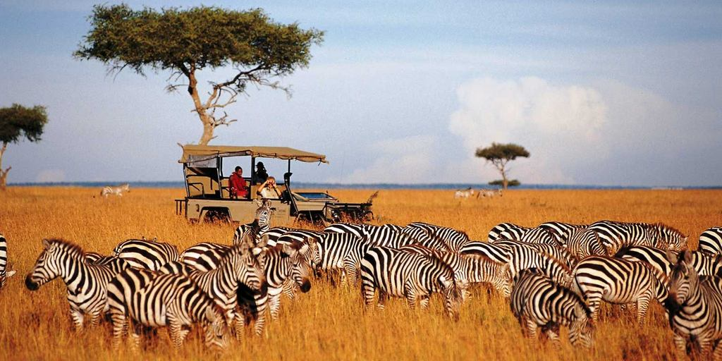 Maasia guides leading the game drive