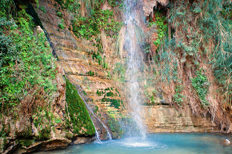 Eid Gedi Nature Reserve - visiting the Dead Sea in Israel