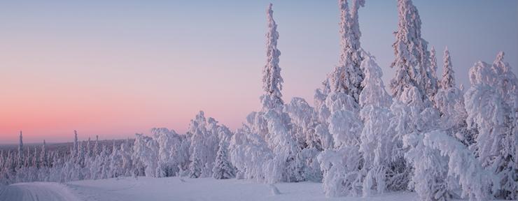 Winter Wonderland – Finland