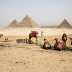A photo journey of King Tutankhamen