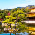 The Temples, Shrines and Castles of Japan