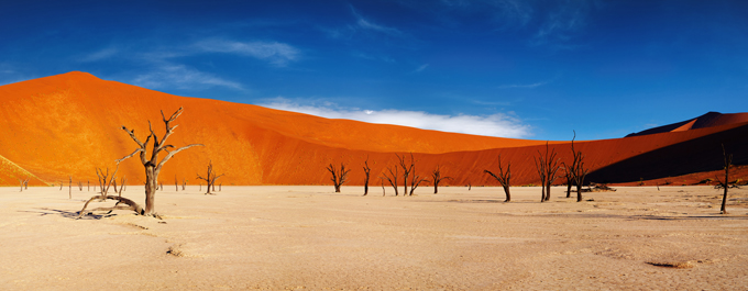 Top 10 Reasons To Visit Namibia