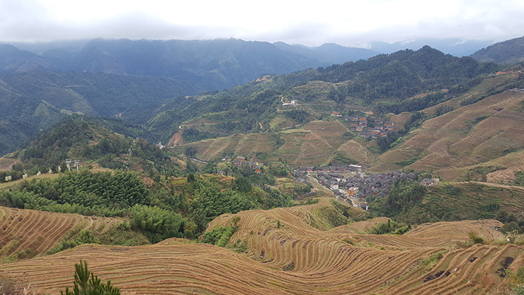 Visiting the Longsheng rice terraces in China - amazing views