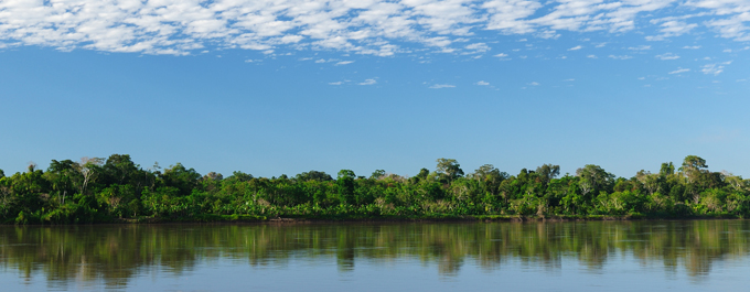 What to Expect when Visiting the Amazon Rainforest