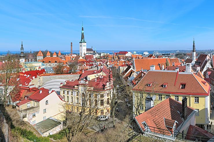 Kohtuotsa Viewing Platform - Where to Visit in Tallinn