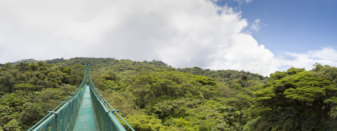 Top Things to do in Monteverde
