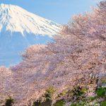 Portrait of Japan