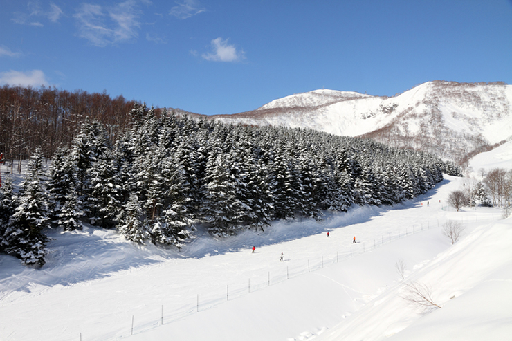 Ski runs in Hokkaido, Japan - skiing is a great reason to visit Japan in winter