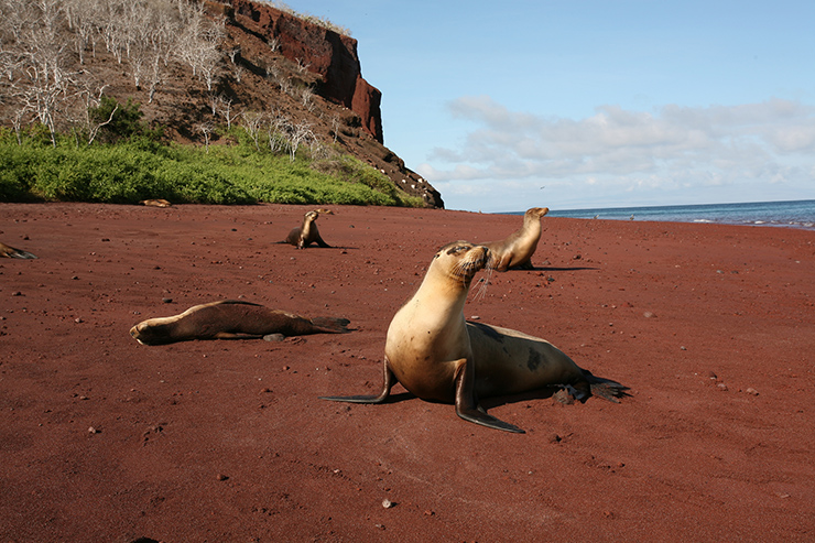 Red Sand Beach, Galapagos Islands - the world's most unusual beaches