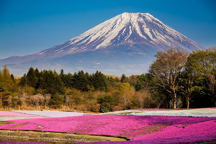 Fuji National Park - Best National Parks in Asia