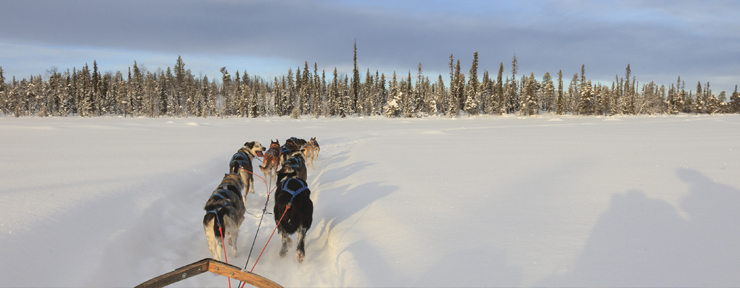 A Family Adventure in Lapland