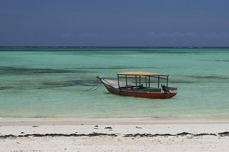 Pongwe - beaches of Zanzibar
