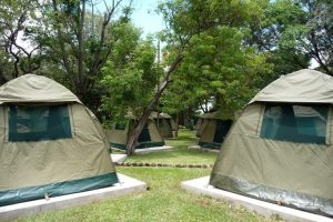 Tents - accommodation - overland camping vs lodge-accommodated safaris in Africa