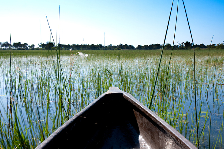Mokoro boat in the Okavango Delta - most romantic experiences around the world