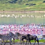 10 Interesting Facts About The Ngorongoro Crater