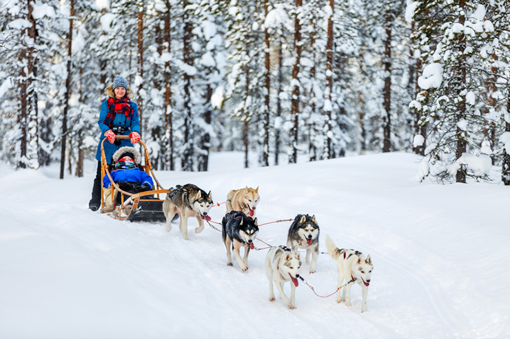 Husky dogs pulling sledge with family in Finland, one of the best family holiday destinations