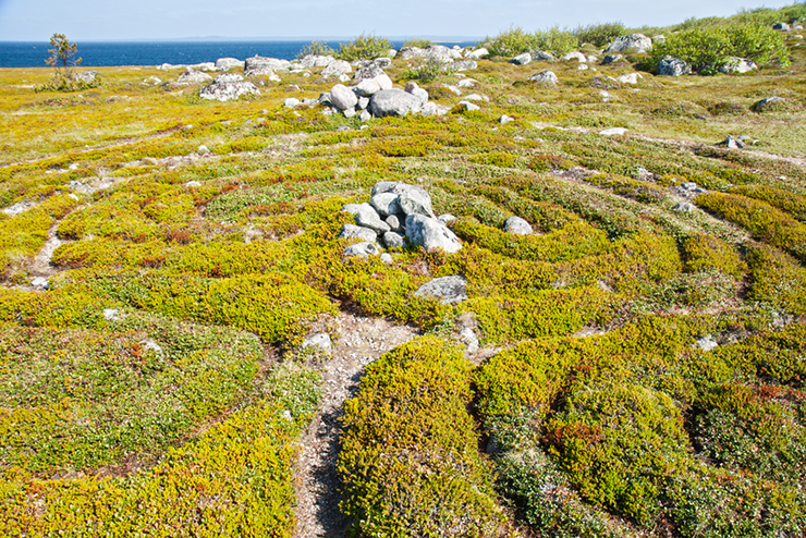Labyrinth on the Solovki islands