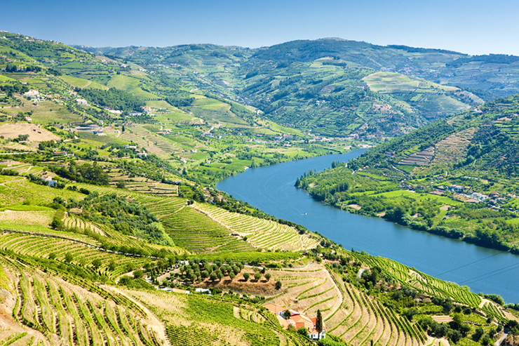 The Douro Valley, one of the best wine tasting destinations