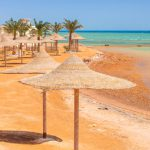 The Best Activities Along The Red Sea Coast