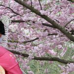 The Ultimate Guide to Kyoto's Geisha District