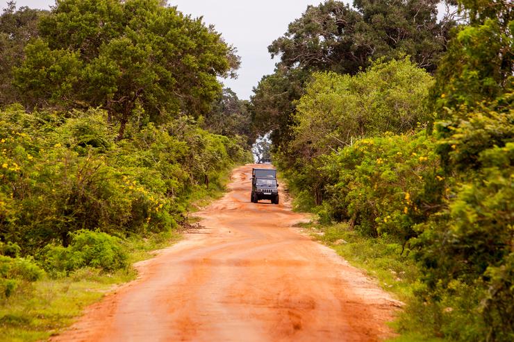 Safari Truck in Sri Lanka