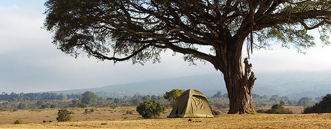 What to Expect: Camping in the Serengeti