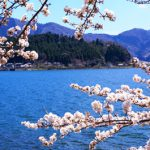 The Best Place in Japan: According to an Expert