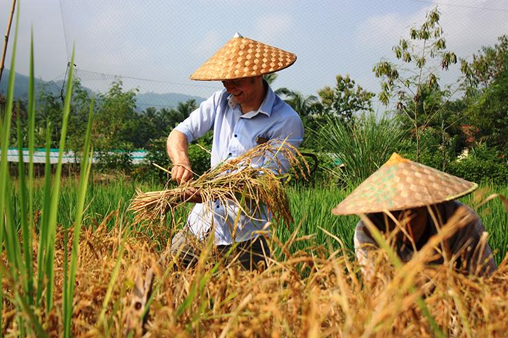 Living Land Farm in Laos