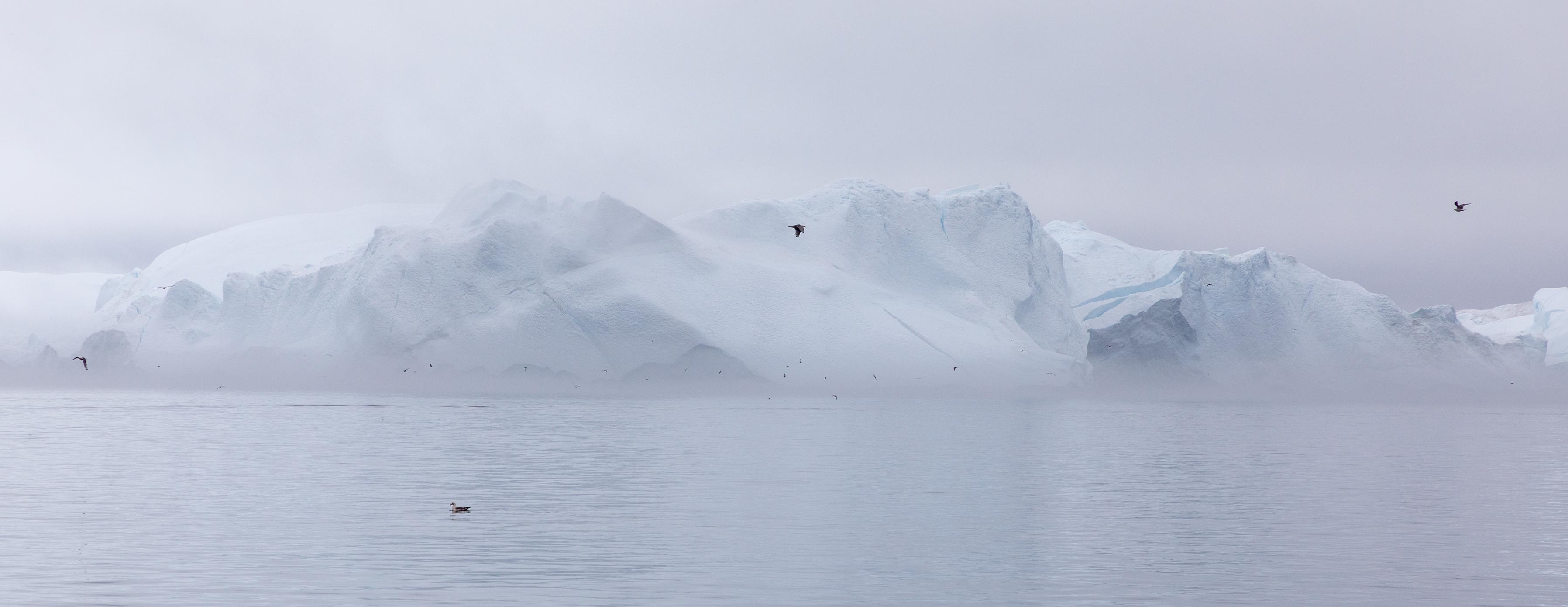 A classic Greenland glacier