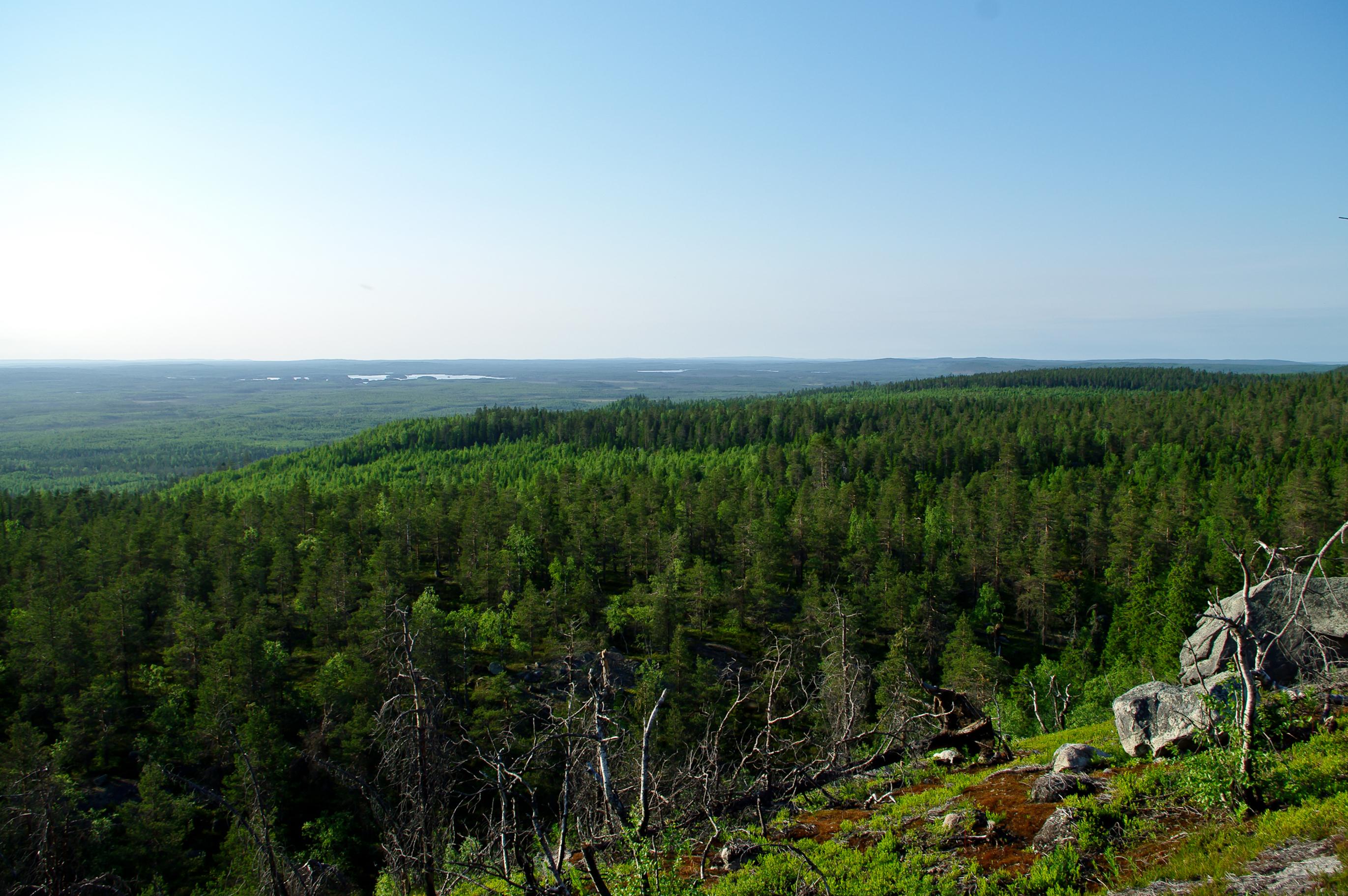 Green Karelia