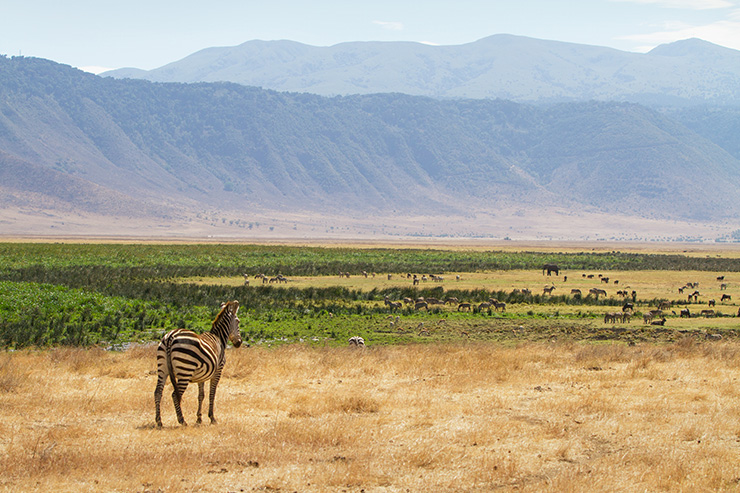 Ngorongoro Crater, Tanzania - best places to visit in the world
