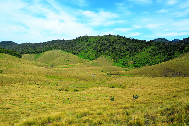 Horton Plains National Park - Sri Lanka
