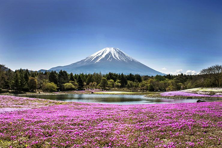 Mount Fuji boasts some of the best views in the world