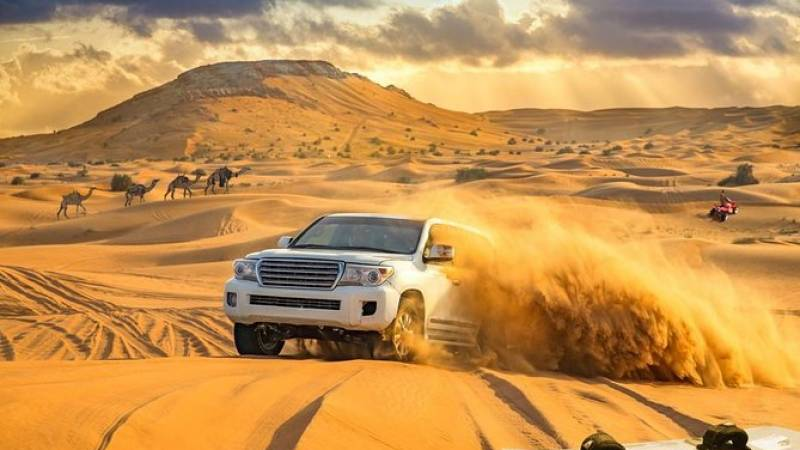 Dubai Red Dune Desert Safari: Camel Ride, Sandboarding & BBQ Options