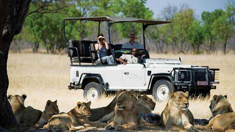 Hwange National Park Day Trip from Victoria Falls